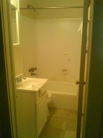 Andrew Jackson Hotel: Room 106 - The bathroom. No problems here.