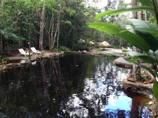 Amazon Ecopark Jungle Lodge: Pool