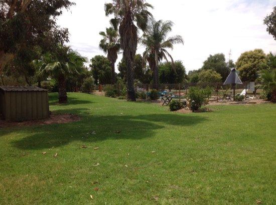 Berrigan Motel: Lush gardens