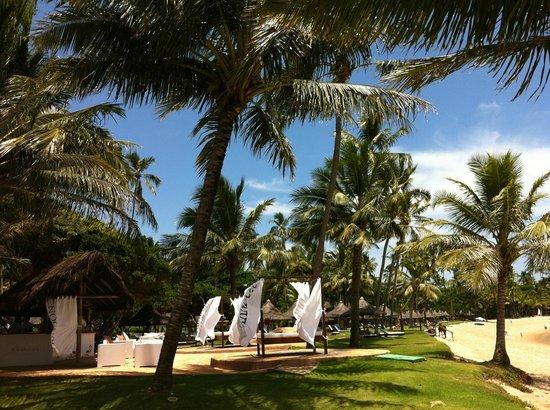 Tivoli Ecoresort Praia do Forte: Gramado com Espreguiçadeiras