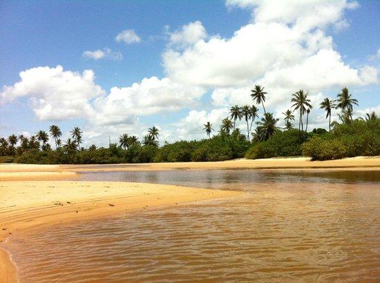Tivoli Ecoresort Praia do Forte: Piscinas Naturais