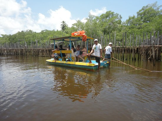 Associação Peixe-Boi: Jangada para visita ao peixe boi