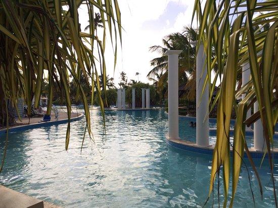 Melia Coco Beach : The pool