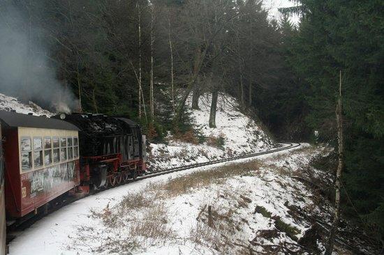 Harzer Schmalspurbahnen: durch den Wald 20