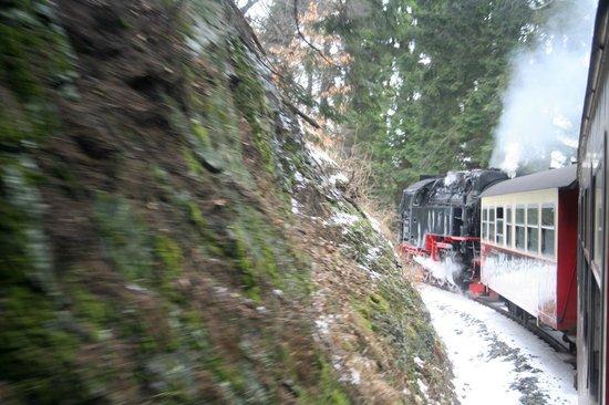 Harzer Schmalspurbahnen: harz 23