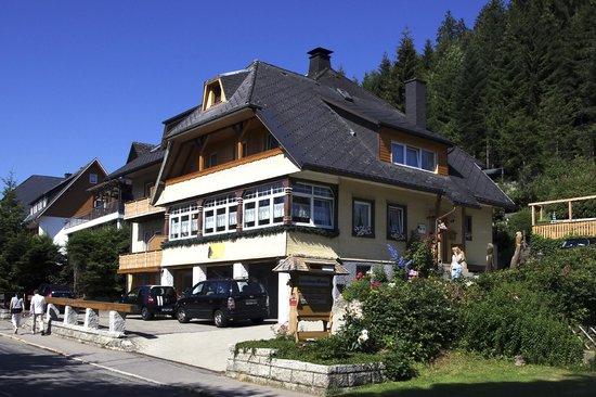 Gästehaus Wiesler: Gästehaus im Sommer