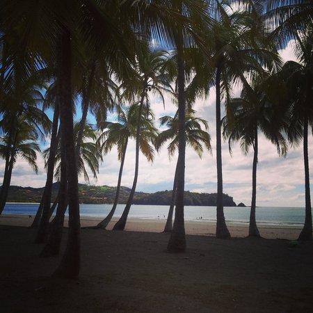 Hotel Guanamar: playa carrillo