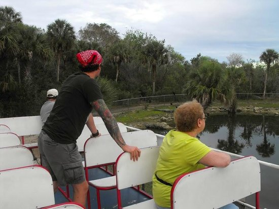 Wooten's Everglades Airboat Tour: On the Swamp Buggy
