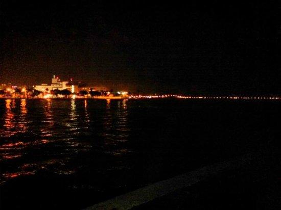 Palmeiras Beach Club at Grove Isle: Night Miami Skyline View