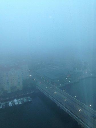 Tampa Marriott Waterside Hotel & Marina: Not so sunny Floriday this January!