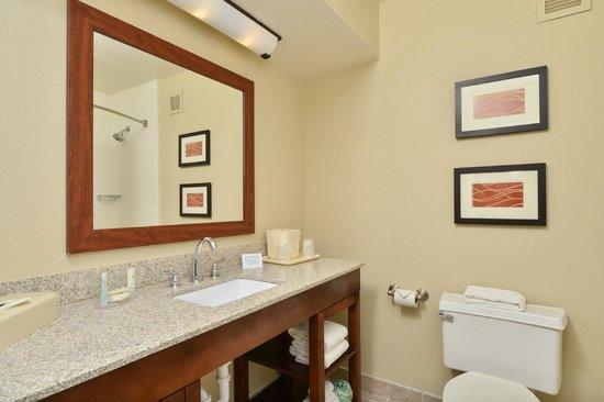 Comfort Inn Elizabeth City: Guest Room Bathroom