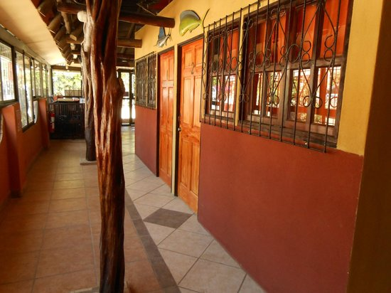El Dorado Hostel : Corridor