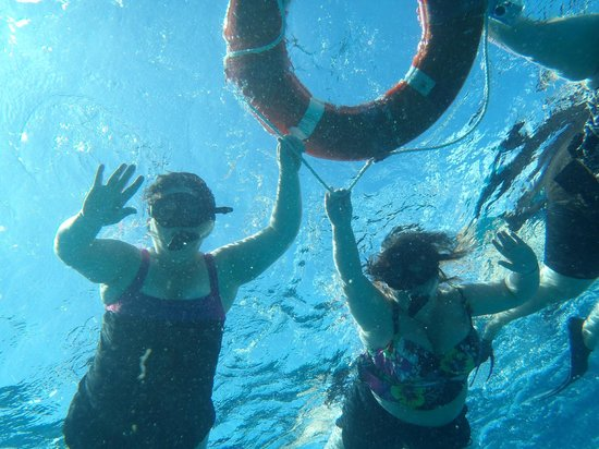 Two D's Diving and Tour Adventures: Sistas