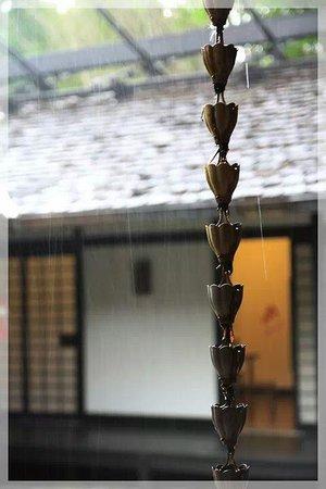 Morikami Museum & Japanese Gardens : Sudden Rain