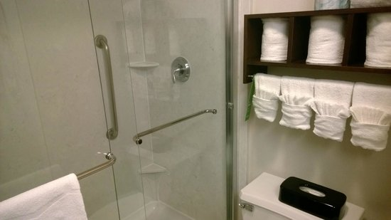 Hampton Inn & Suites Seattle Downtown: Shower