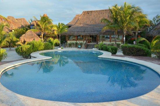 Villas Flamingos: pool