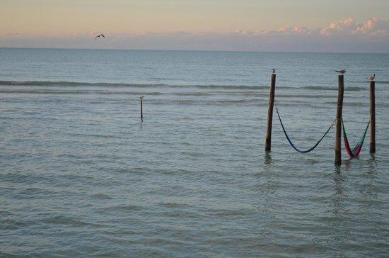 Villas Flamingos: water hammocks