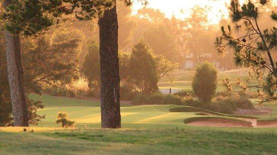Glenelg Golf Club: 9th Green from the 10th Fairway