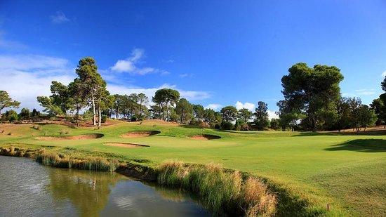 Glenelg Golf Club: 13th Green
