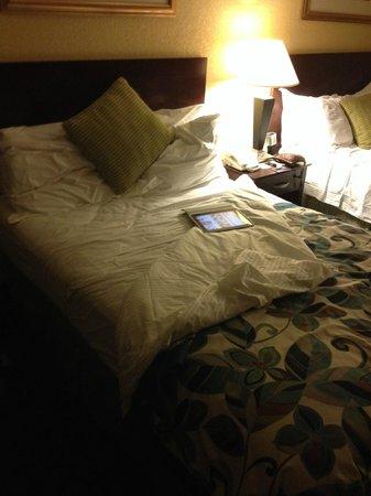 Wyndham Lake Buena Vista Disney Springs Resort Area: Cama 1