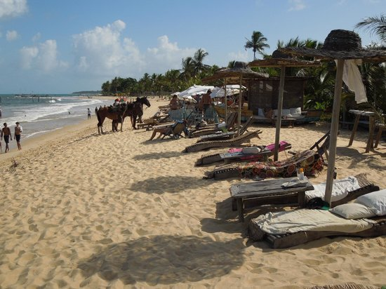 UXUA Casa Hotel & Spa: UXUA beach facilities on the Atlantic