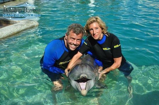 Miami Seaquarium: Dolphin Group Photo