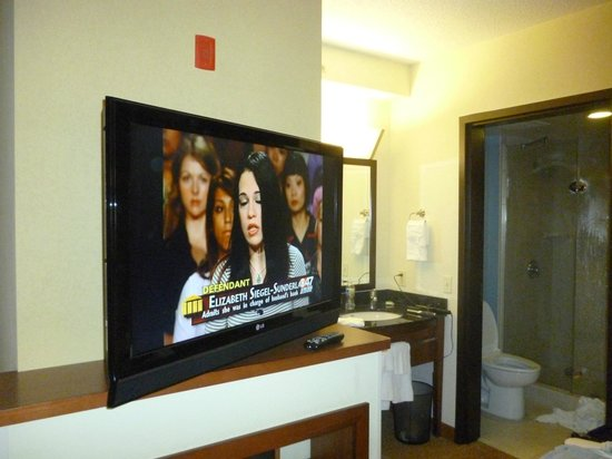 Hyatt Place Jacksonville Airport: TV