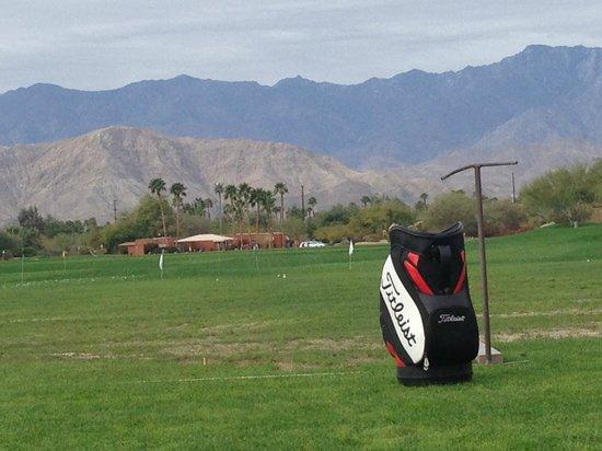 Desert Willow Golf Resort : Driving range.