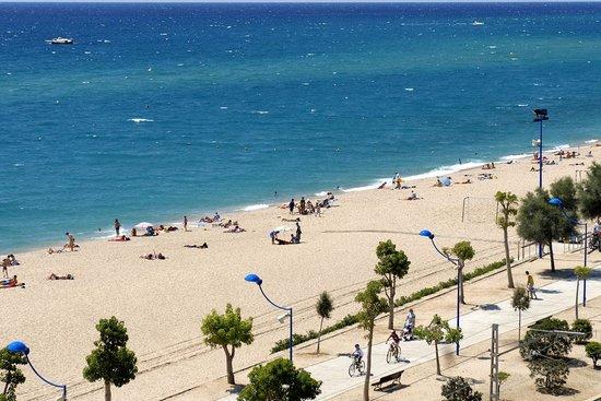Tropic Park : la plage