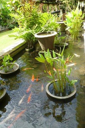 Ramayana Resort & Spa: Koi pond/garden