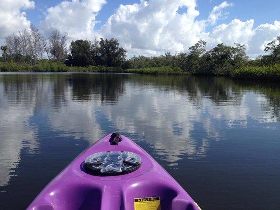 Robinson Nature Preserve: kayak view
