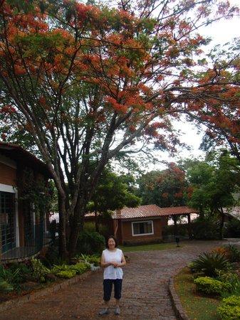 Grinberg's Village Hotel: Lugar adorael