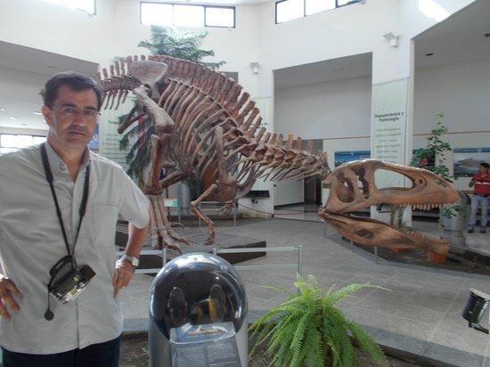 Museo Paleontologico Egidio Feruglio: Ni bien cruzamos la entrada
