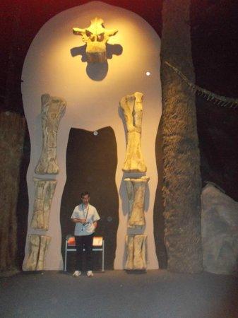 Museo Paleontologico Egidio Feruglio: Vértebra del argentinosaurio