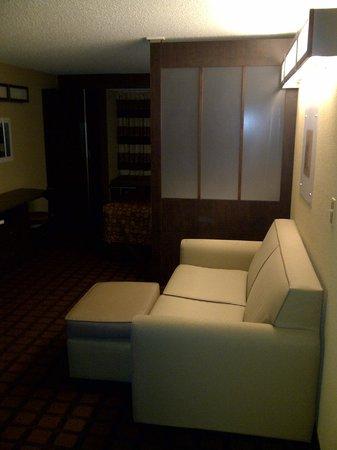 Microtel Inn & Suites by Wyndham Harrisonburg: Divider wall