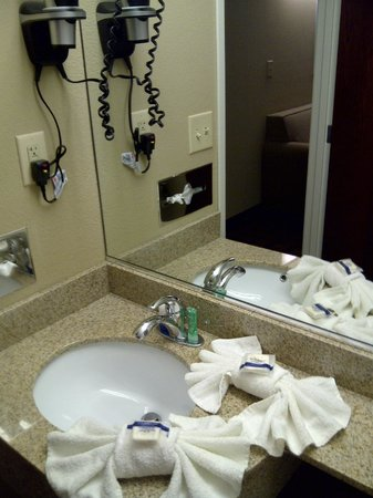Microtel Inn & Suites by Wyndham Harrisonburg: Bathroom sink
