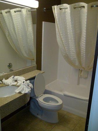 Microtel Inn & Suites by Wyndham Harrisonburg: Bathroom