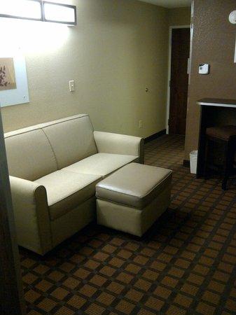 Microtel Inn & Suites by Wyndham Harrisonburg : Living room