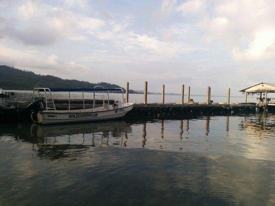 Coco Plum: Diver's bote