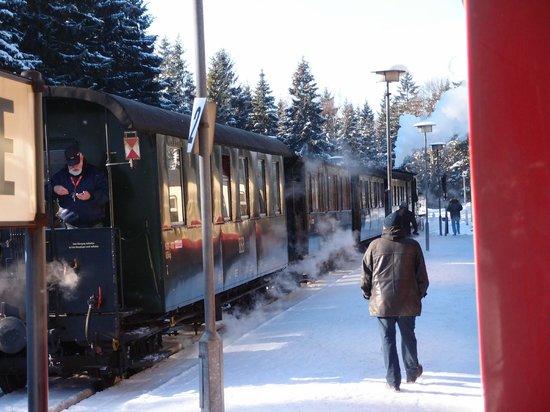 Harzer Schmalspurbahnen: 蒸汽火車,從Brocken山上下來,途中停留的一站