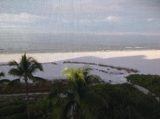 Pink Shell Beach Resort & Marina : Beach view from balcony