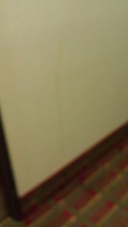 Super 8 Charlottesville: Looks like blood on hallway wall on 2nd floor!
