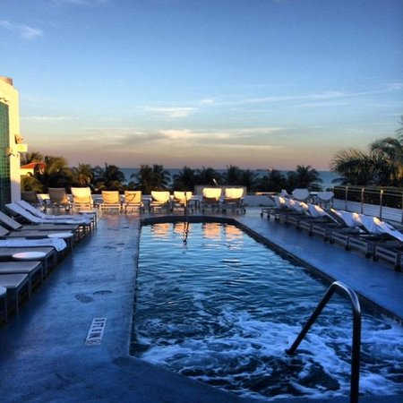 The Hotel of South Beach : Rooftop pool