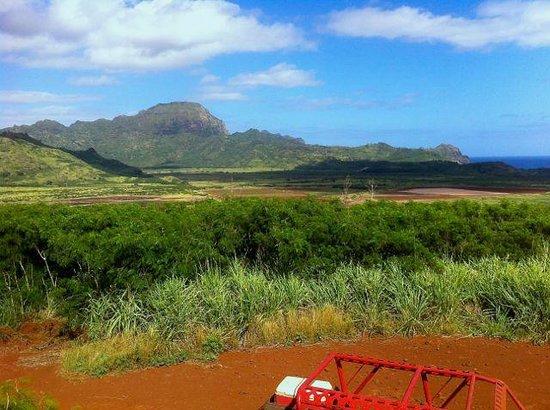 Kauai ATV Tours: Part of  the valley of movies