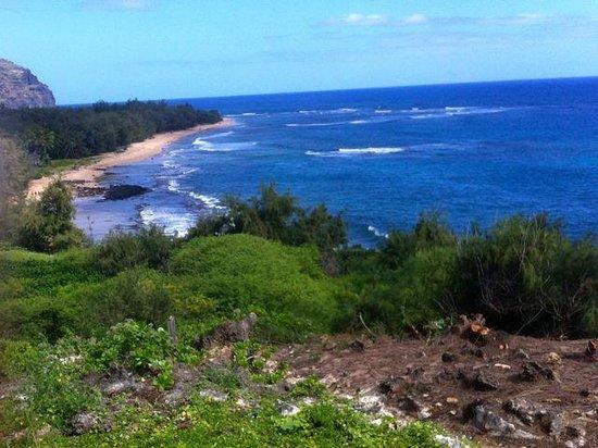 Kauai ATV Tours: A beach along the way