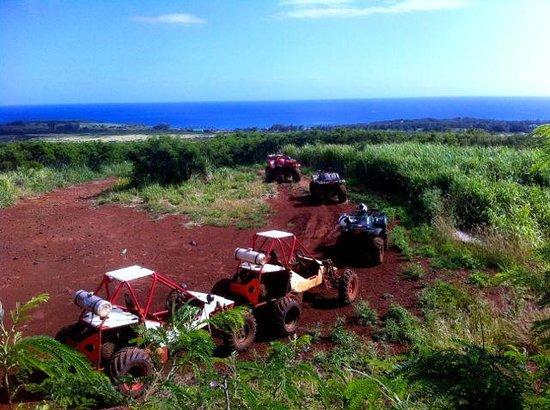 Kauai ATV Tours: Quads and dune buggies