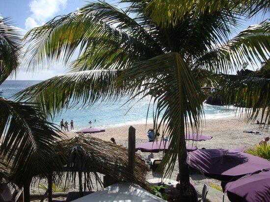Do Brazil: Shell Beach