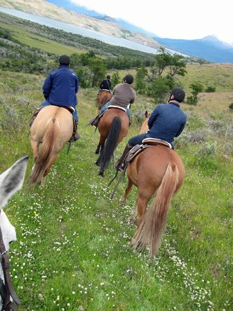 The Singular Patagonia : Horseback riding option