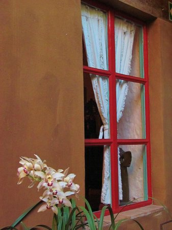 Hotel Casa Encantada: Orchids against the dining room window.
