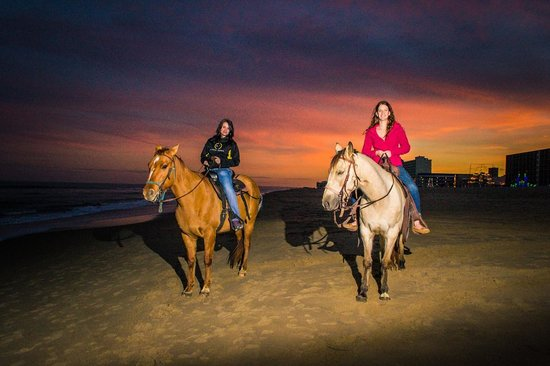 Virginia Beach Horseback